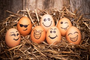 eggs with faces, list of personality traits