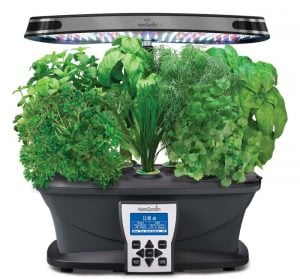 miracle-gro-aerogarden-ultra-led-indoor-garden-with-gourmet-herb-seed-kit-e1448777338502
