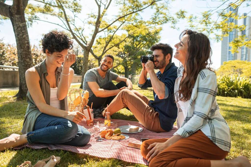friends at picnic, extraverted introvert