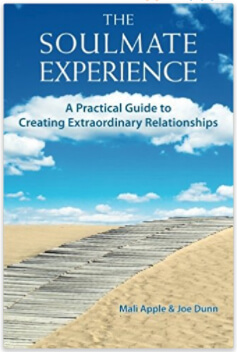 Soulmate Experience cover books for couples