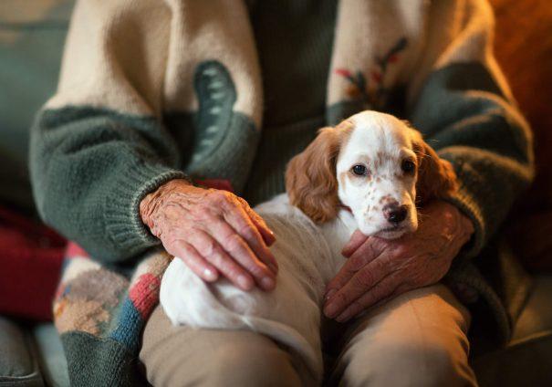 woman with dog, feeling hopleless