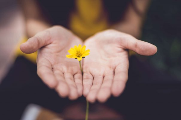 hands with flower, eckhart tolle quotes
