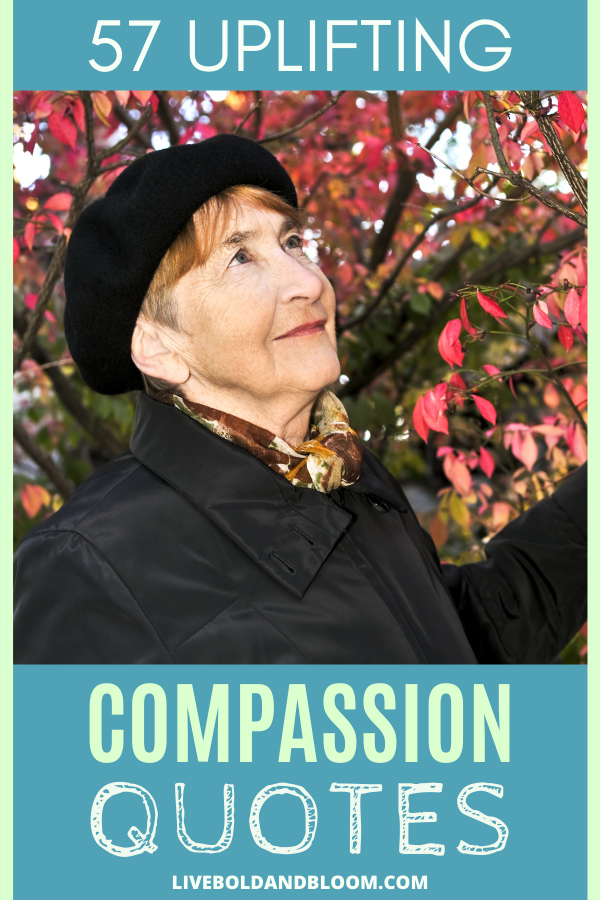 Read these 57 uplifting compassion quotes to help you to both give and receive compassion with grace and gratitude.
