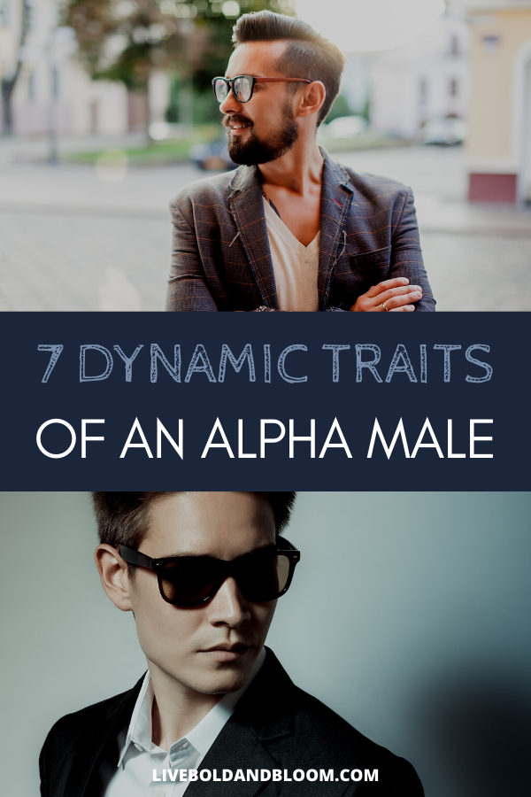 """What traits do you expect to find in a true alpha male?  And what do the words """"alpha male"""" even mean?   Is it a good thing to have an alpha male mentality?  And what is it about the alpha male personality that makes it so attractive and so worth cultivating?   Because it can be cultivated. #behavior #traits #psychology #mindset #personalgrowth"""