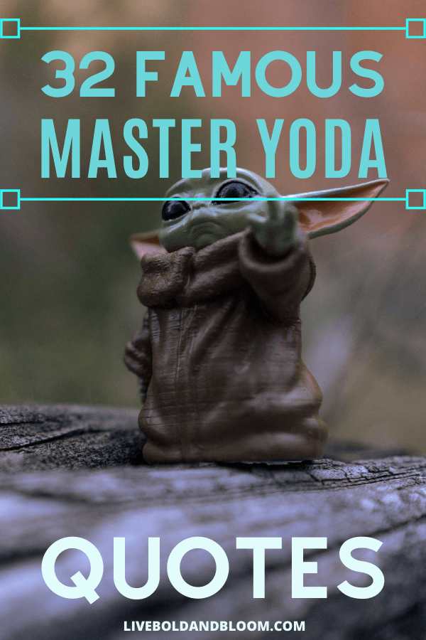 Everyone needs a guide sometimes to help them make better choices. Some find their guide of the moment in a book. Others in a relative, a friend, or a co-worker.  And as you'll see in these 41 famous Yoda quotes, it's even possible to find guidance in a movie character. #quote #mindfulness #personalgrowth #selflove #quotes